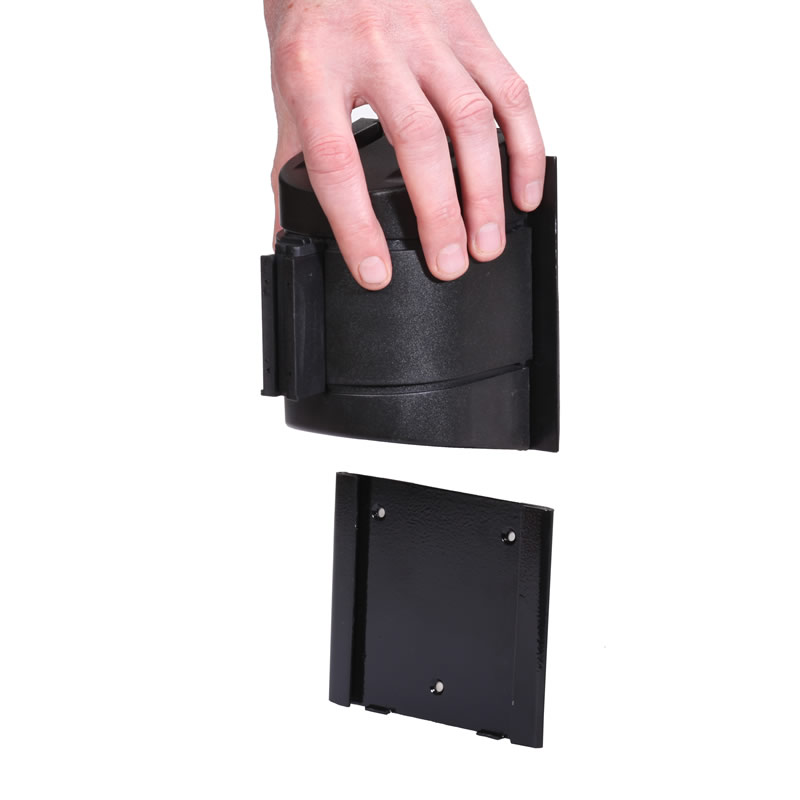 Removeable Mount for WallPro